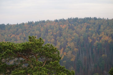 View from Stolby National Park