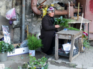 Kutaisi - Woman selling plants