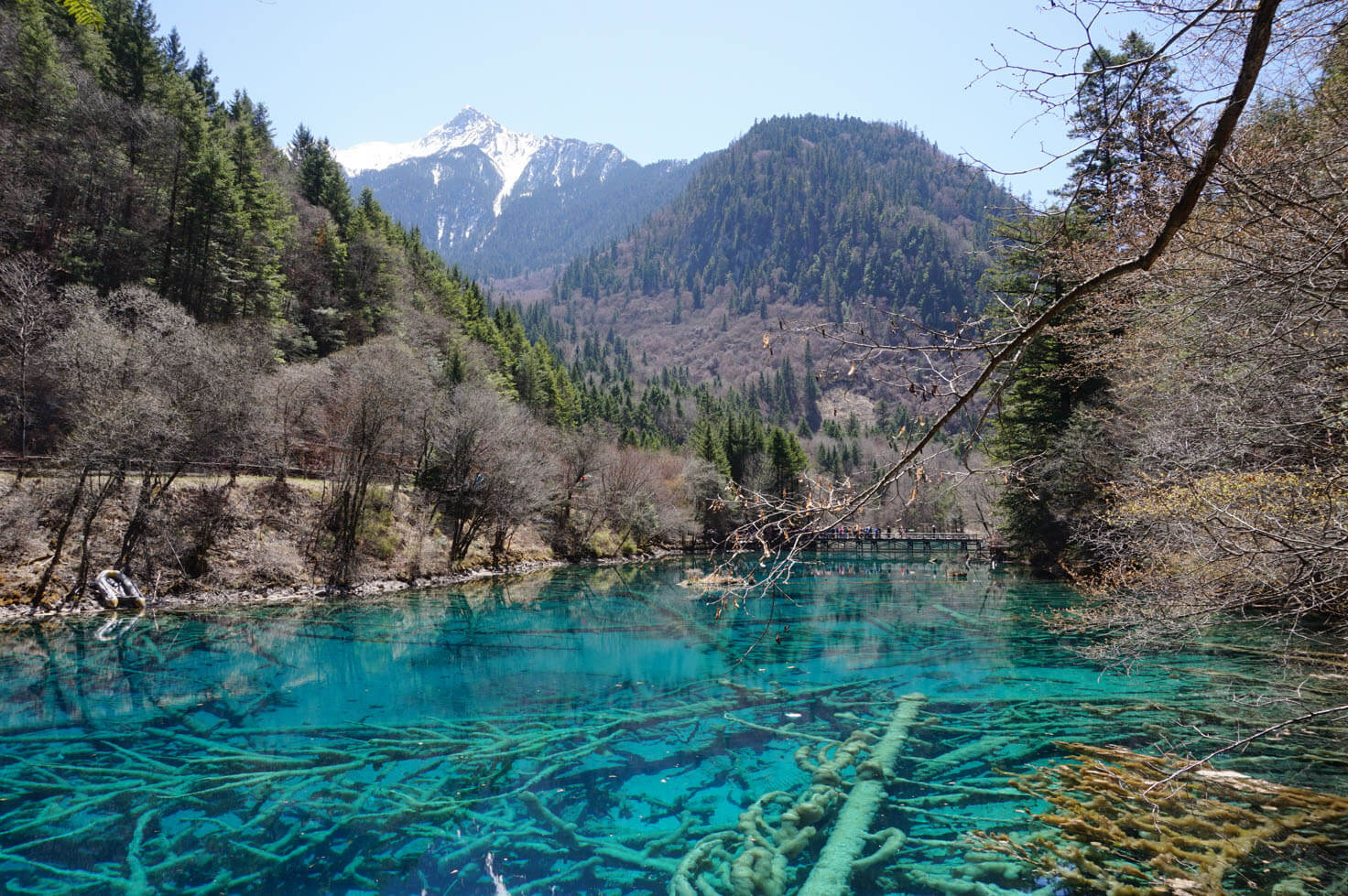 Nature Travels - Jiuzhaigou National Park