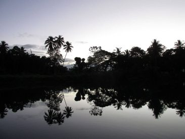 Loboc River at sunset