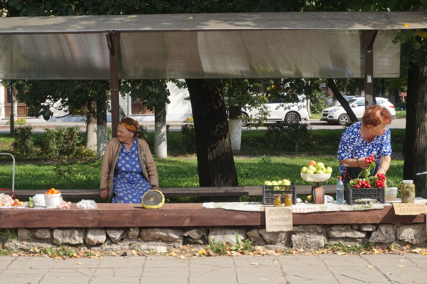 Charming locals in Suzdal