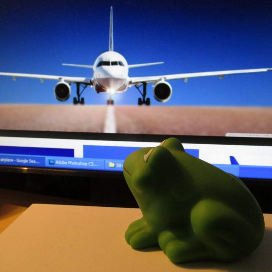 A frog and a plane