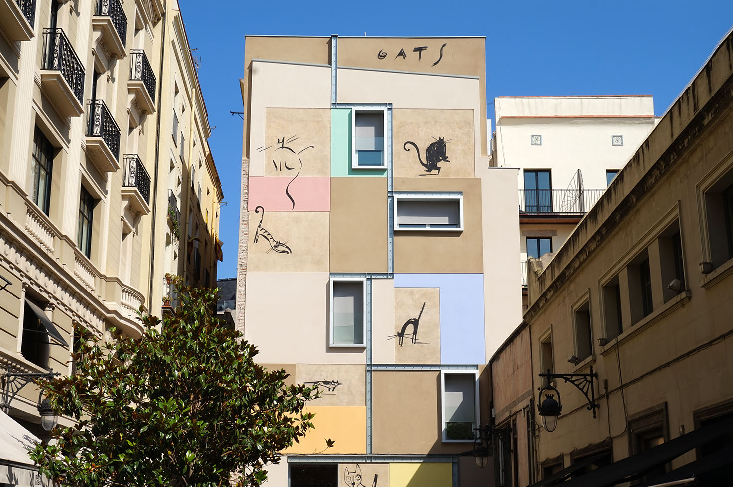 Cats in Raval